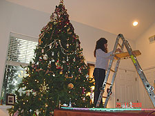 Heidi decorating